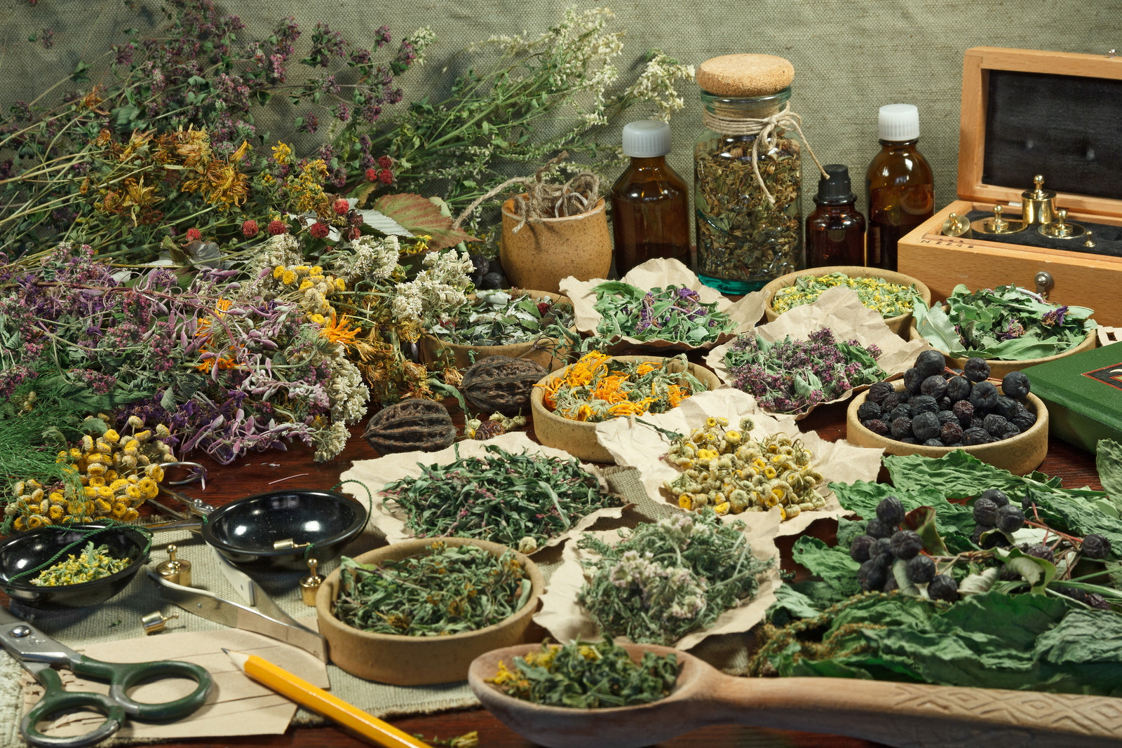 Dried Herbs and Spices, Sage Hill Botanicals