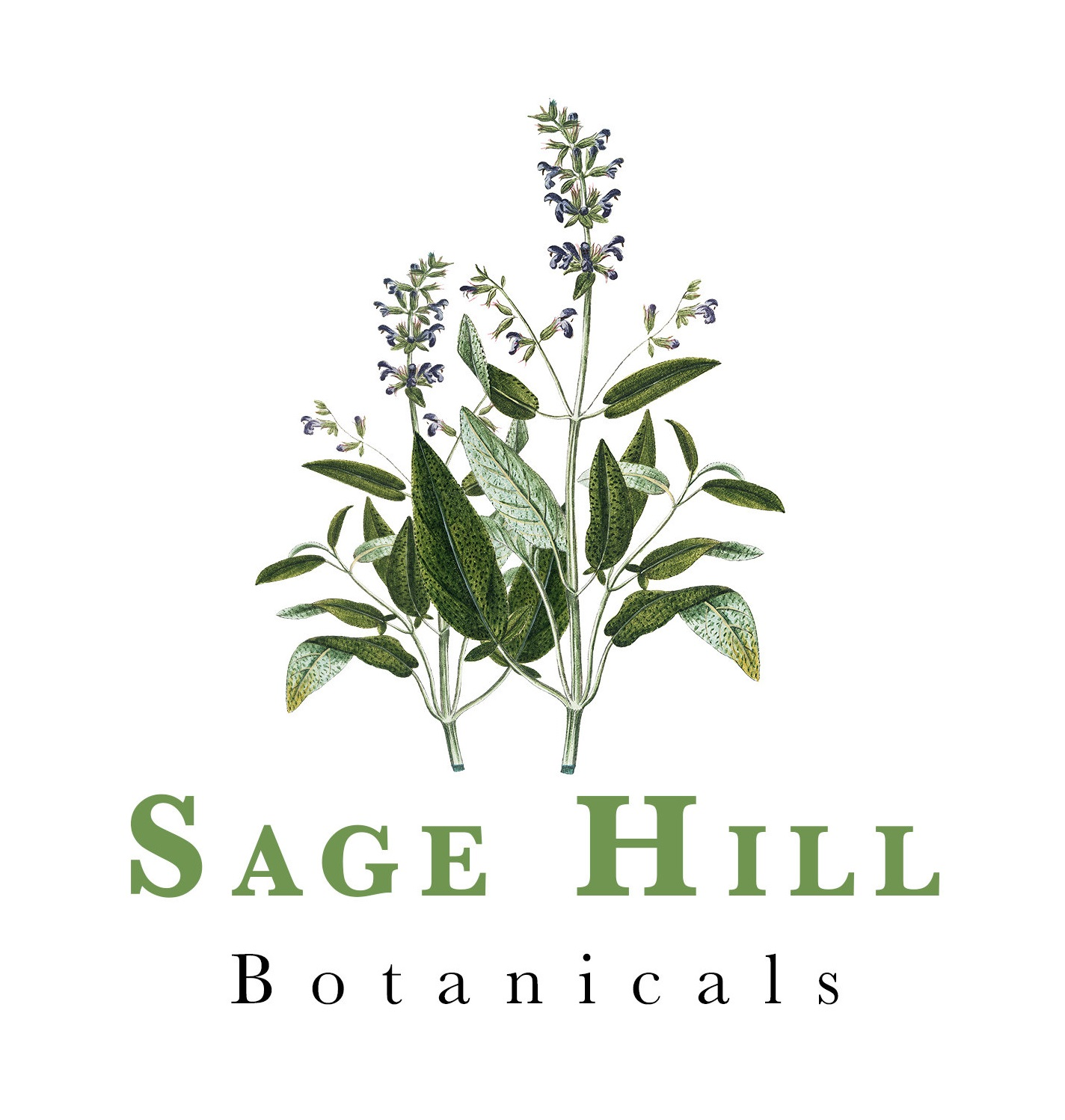 Logo for Sage Hill Botanicals, Herbs, Spices, and Plant Skincare and Makeup